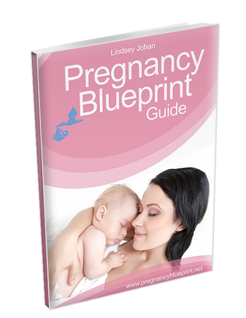 Pregnancy blueprint by lindsey johan simply fill the form below and receive your pregnancy blueprint guide from lindsey johan no cost no fuss malvernweather Image collections